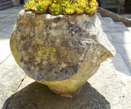 2013-07- Stone Planter at Yorkminster Abbey